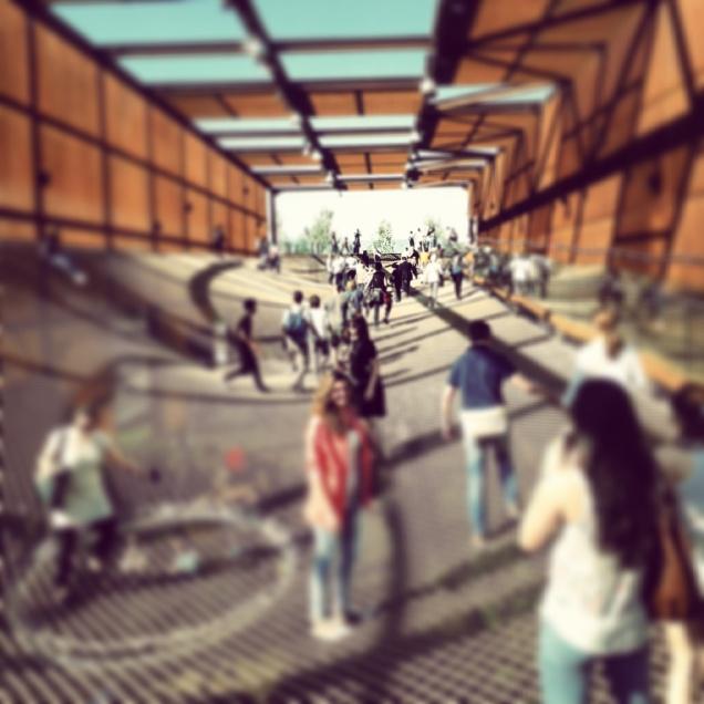 Lunghissima rete sospesa  in Brasile