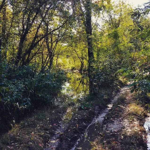 Il cammino reso impervio da fango e pozzanghere