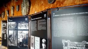 Gli irredenti e volontari giuliano dalmati nell'Esercito Italiano