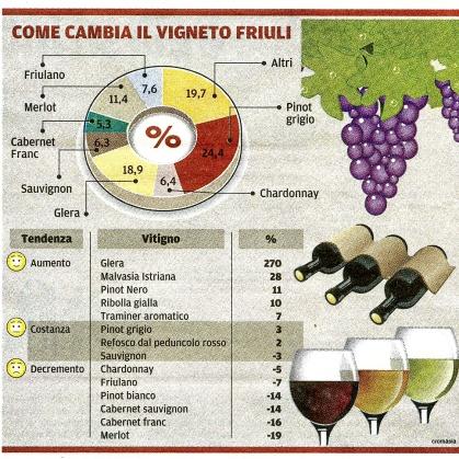 Come cambia il vigneto in Friuli