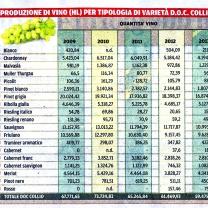 Produzione di vino (HL) per tipologia di varietà D.O.C. Collio