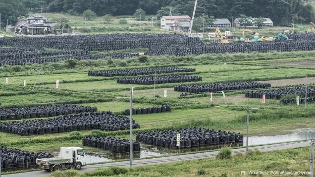 Fukushima, 5 anni fa il disastro nucleare 2