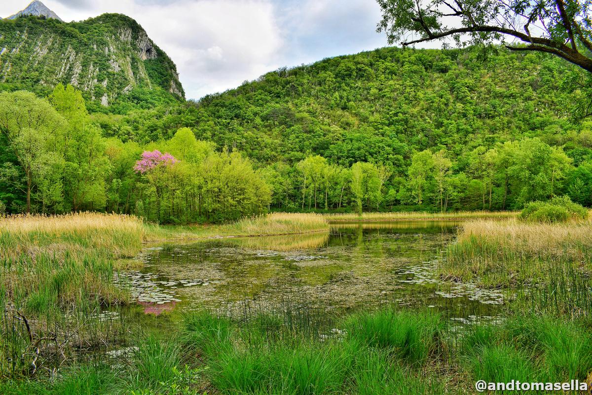 lago minisini monte ercole ospedaletto gemona