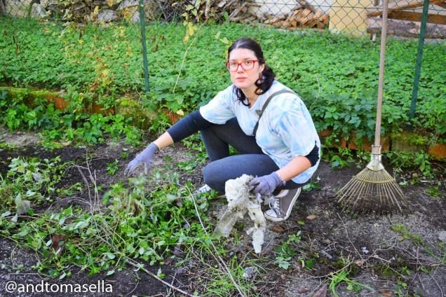 giovane volontaria legambiente gorizia