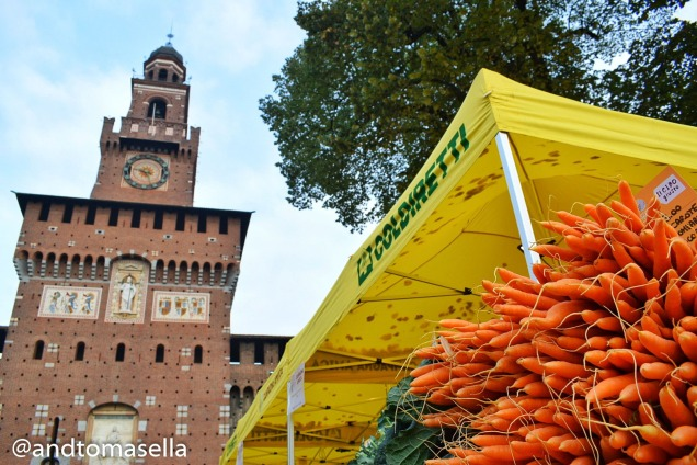 carote coldiretti sto coi contadini milano 2017 castello sfrozesco