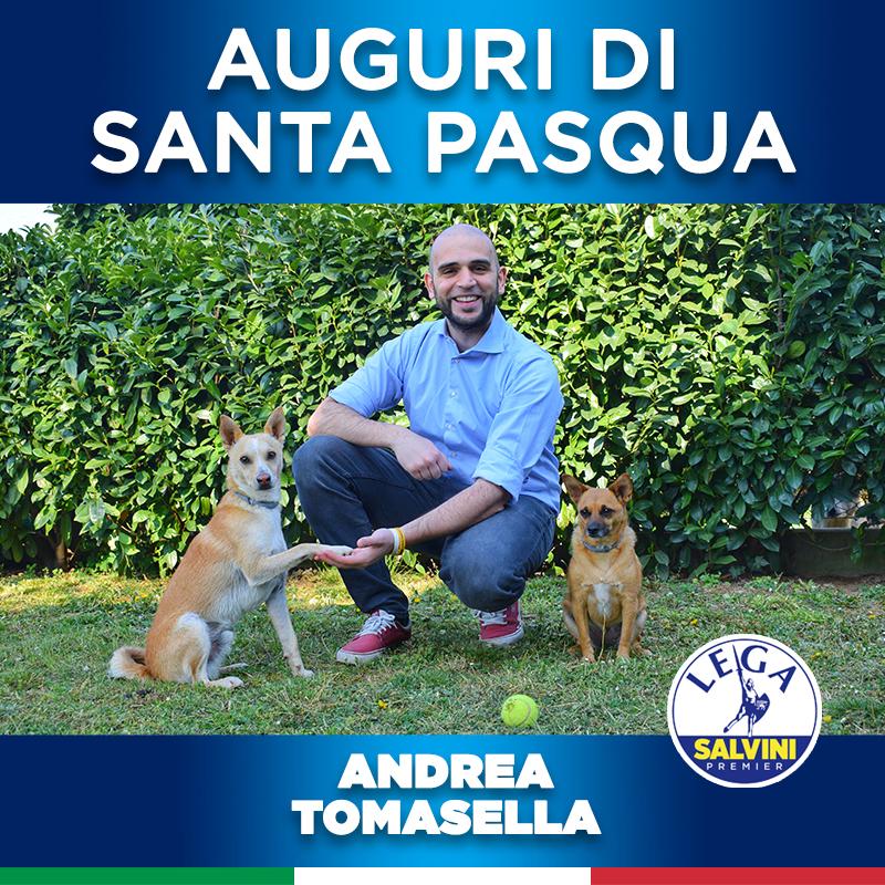 consigliere comunale con cani